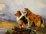 Two Collies Above a Lake