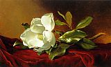 A Magnolia on Red Velvet by Martin Johnson Heade